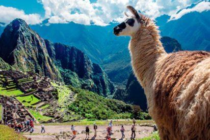 Machu Picchu se convertirá en el primer atractivo turístico de carbono neutral en el mundo