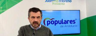 """Martín (PP-A): """"Sánchez e Illa están más pendientes del PSC que de los PCR, más de las elecciones catalanas que de salvar vidas"""""""