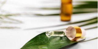 Tratamientos naturales para el acné con árbol del té