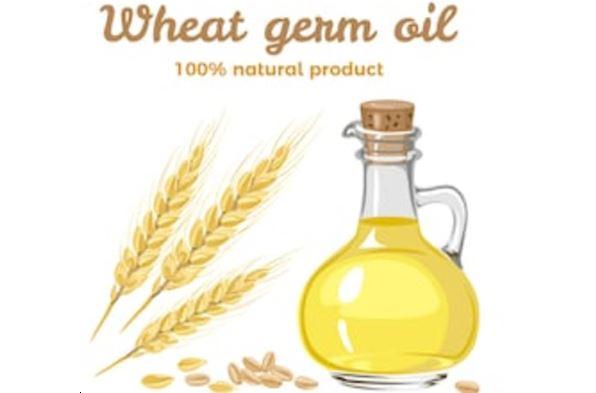 propiedades tiene el aceite de germen de trigo