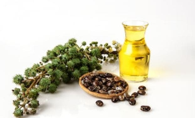 cosmética natural el aceite de ricino