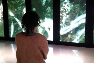 Porto: WOW, un viaje-experiencia por el Museo del Vino
