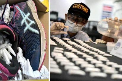 La aduana filipina halla 119 tarántulas vivas escondidas en dos zapatillas deportivas