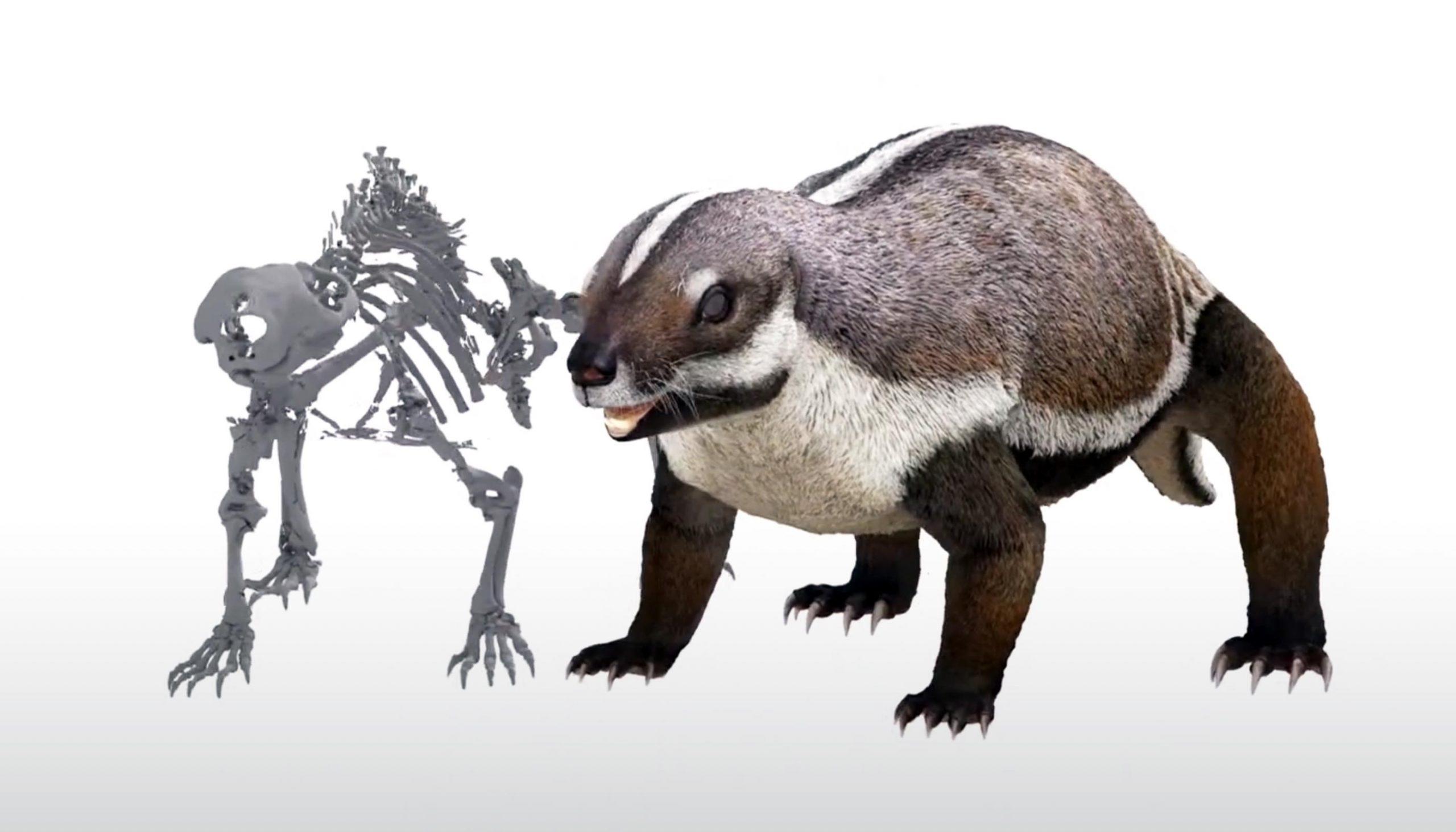 Así era la 'bestia loca', el mamífero que intimidaba a los dinosaurios