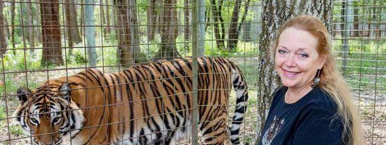 Un tigre ataca a una voluntaria del santuario 'Tiger Kink' y casi le arranca el brazo