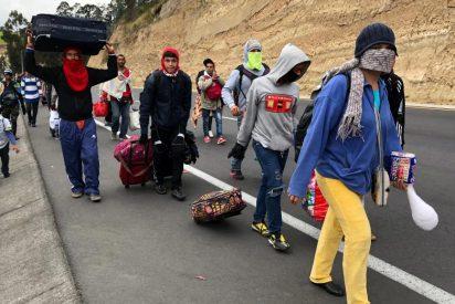 La OEA vaticina que en 2021 habrá por lo menos siete millones de refugiados venezolanos