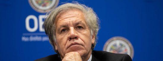 """La OEA, a favor de la extradición del testaferro de Maduro: """"Es clave para disolver al régimen chavista"""""""