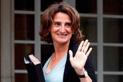 Teresa Ribera mete la gamba en Twitter al citar a la Junta de Castilla y León en una cuenta fake
