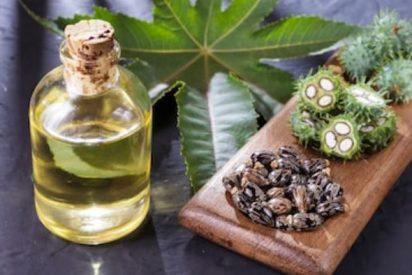 Propiedades aceite de ricino