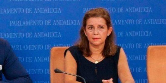 """María José Piñero (VOX) critica las """"políticas improvisadas"""" del Gobierno de la Junta para frenar la pandemia de Covid-19"""