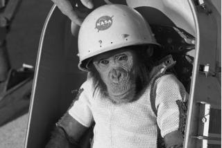 Se cumplen 60 años del primer viaje espacial de un primate