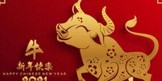 Horóscopo chino: Bienvenidos al año del buey