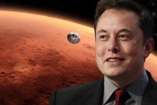 """Elon Musk confiesa a un empresario cómo logra gestionar todas sus compañías: """"Soy un extraterrestre"""""""