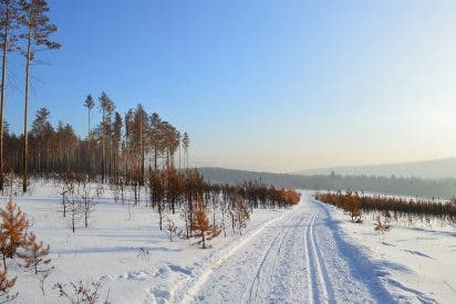 España: la borrasca Filomena obliga a cerrar por nieve unas 200 carreteras