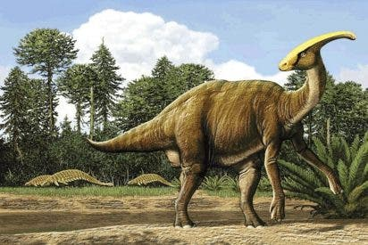 Un inédito fósil desvela el auténtico aspecto de los Parasaurolophus