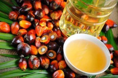 aceite de palma para la piel