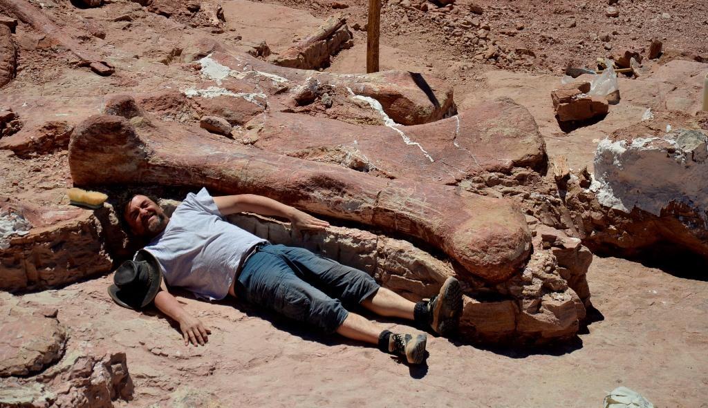 El dinosaurio terrestre más grande conocido puede ser argentino