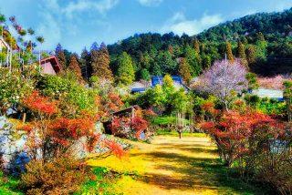 Aventuras en la naturaleza y senderismo en Kioto para empezar este 2021