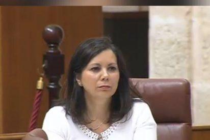 VOX lamenta que el Gobierno de Juanma Moreno asuma el discurso de género del PSOE-A
