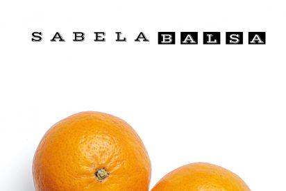 La nueva novela de Sabela Balsa: 'Los insectos también tienen corazón'