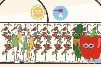 """Finaliza """"Cultivamos el Sabor de Europa"""", el concurso de Cute Solar sobre los invernaderos solares"""