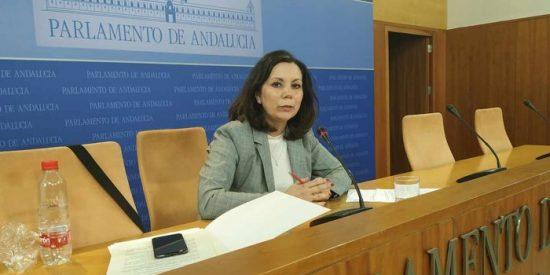 """Ángela Mulas (VOX Andalucía): """"Los andaluces tenemos derecho a explicaciones por el dinero gastado en juergas, prostíbulos y fiestas"""""""