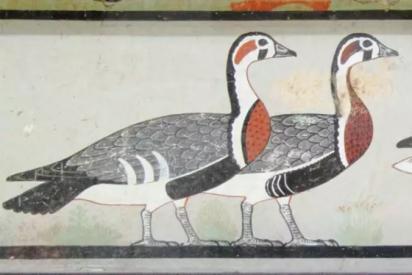 Una antigua pintura egipcia demuestra la existencia de una extinta especie de ganso