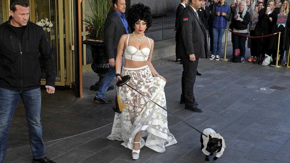 Lady Gaga : la Policía recupera sanos y salvos a los dos bulldogs franceses robados a la diva