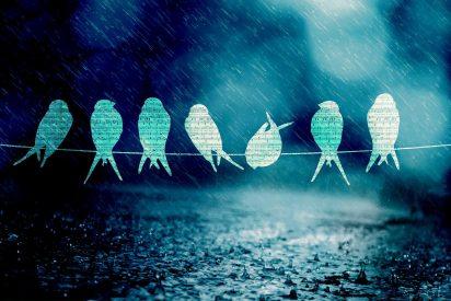 Pronóstico del Tiempo: lluvia y frío este 8 de febrero de 2021