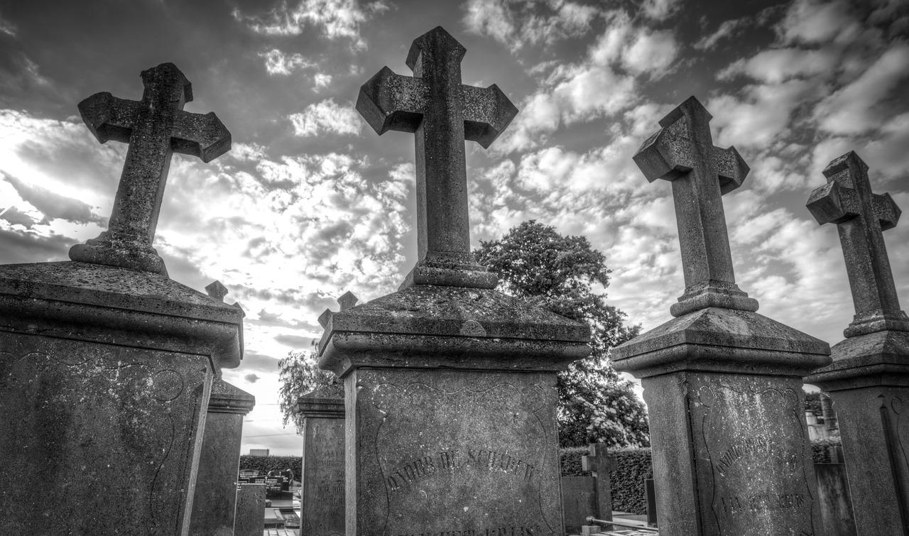 'Deep Nostalgia': la herramienta de Internet que te permite resucitar a tus parientes muertos