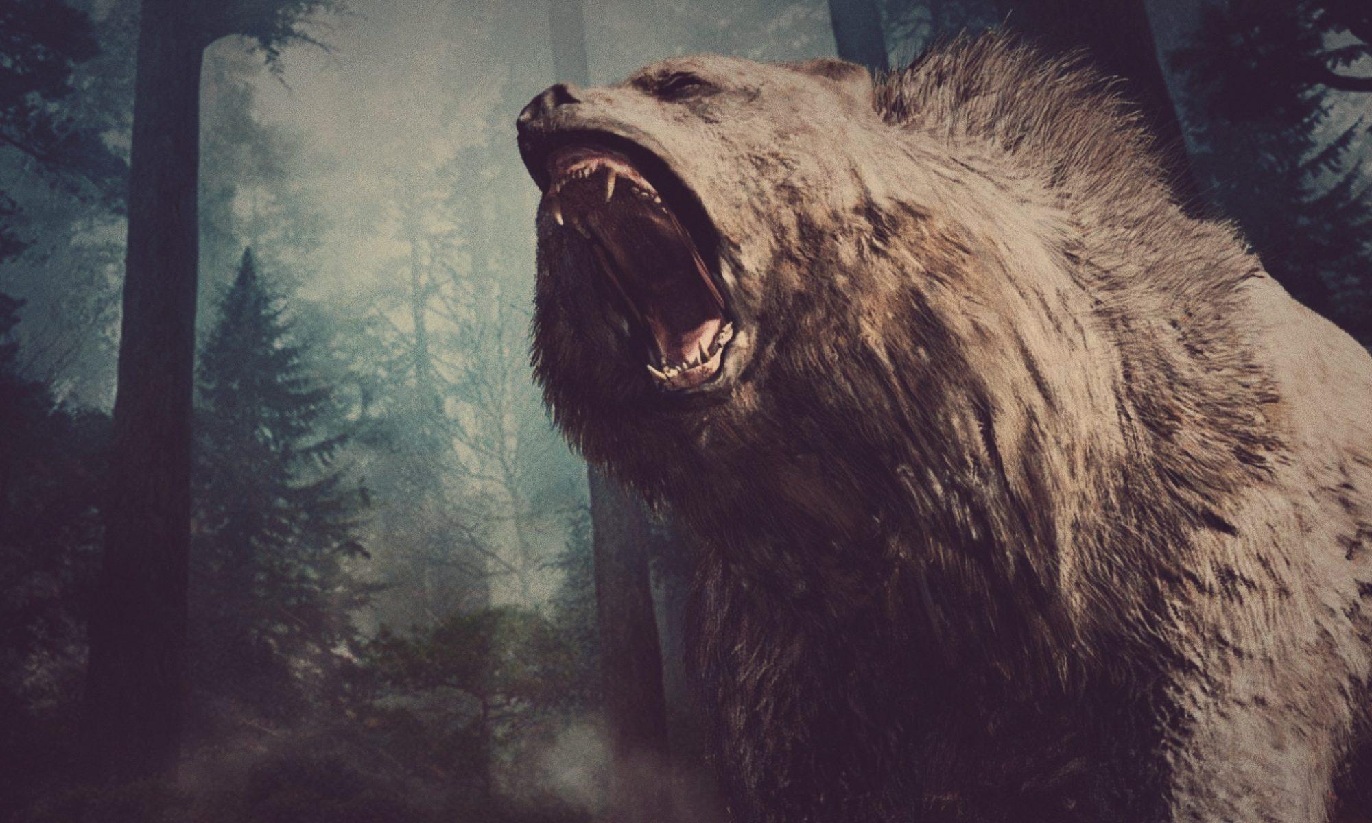 Científicos logran secuenciar el genoma del oso de la cavernas usando un hueso de hace 360.000 años