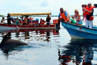 Destinos de ensueño/ Panamá: Bahía de los delfines