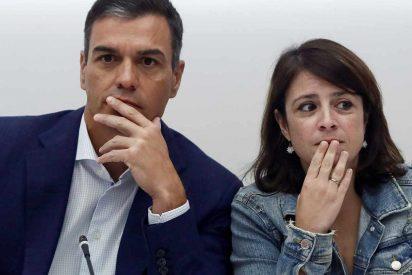 """Carlos Dávila: """"La desfachatez pide 100 días"""""""