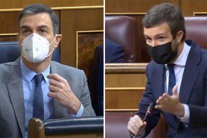 """Sánchez se digna a aparecer por el Congreso y Casado le muele: """"¡España no merece un presidente como usted!"""""""