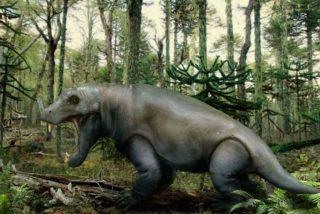 El Anteosaurus ni pesado ni lento: fue un feroz asesino de la naturaleza
