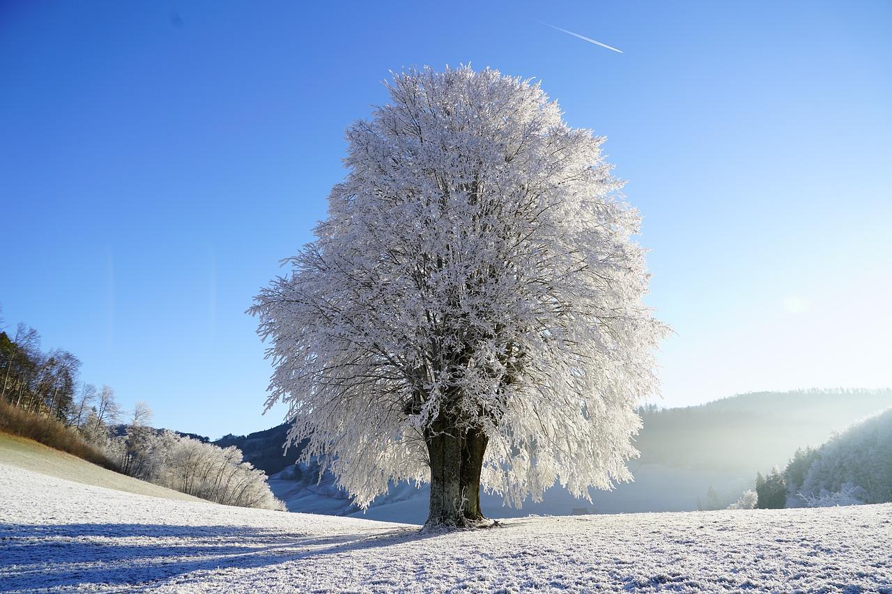 Pronóstico del Tiempo: llega la primavera con un clima invernal este 20 de marzo de 2021