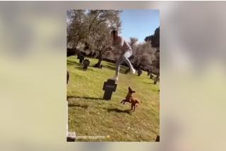 Capturan a un atontado por grabarse saltando sobre tumbas en Cáceres