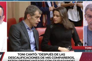 """El ego herido de Toni Cantó como buen actor: """"Tengo hasta más visualizaciones que Inés"""""""
