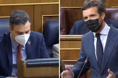 """Casado retrata a Sánchez: """"Saca la apisonadora de la propaganda el mismo día que acercan al asesino de Gregorio Ordoñez"""""""