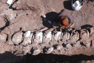 El titanosaurio más antiguo del mundo, descubierto en la Patagonia