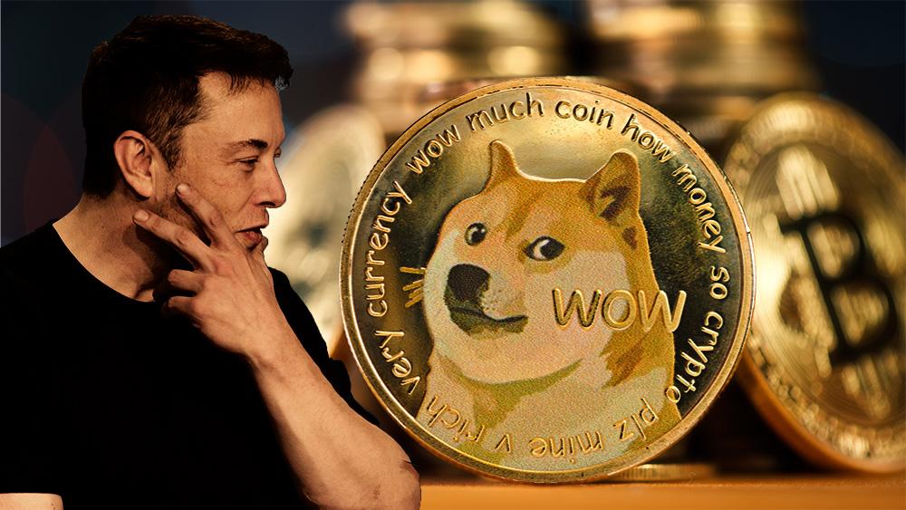 'Ladrando a la luna': el dogecoin de Elon Musk se dispara un 600 % en una semana