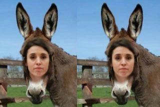 Irene Montero: 'burros, burres y sobre todo... ¡¡¡burras!!!'