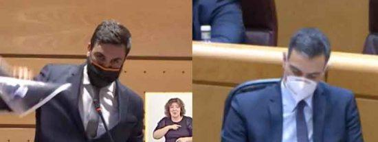 """El repaso de un senador de VOX a Sánchez: """"Usted es un virus para la democracia y para España. Márchese ya"""""""