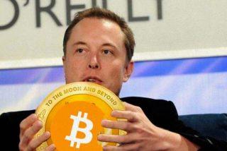 Locura en las criptomonedas: el Bitcoin rebota, porque Elon Musk habla de las 'manos de diamante' de Tesla