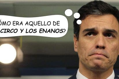 A Pedro Sánchez le crecen los enanos: el efecto 4-M se extiende por toda España