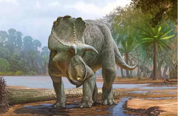 Arqueólogos hallan un dinosaurio con cuernos del Cretácico en Nuevo México