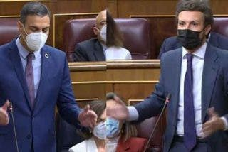 """Casado (PP) retrata a Sánchez (PSOE): """"Esto le queda grande"""""""