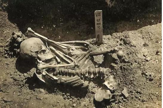 Los fósiles que muestran el ataque de un tiburón a un humano hace 3.000 años