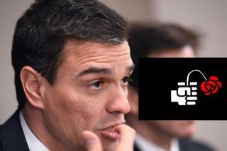 """Carlos Dávila: """"La gente toma a chufla al indigente Sánchez"""""""