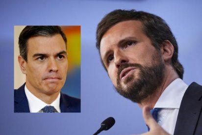 """Pablo Casado: """"Sánchez está secuestrado por los independentistas porque ha querido"""""""